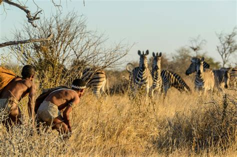 Botswana Holiday Guide - Walk with the Bushmen on a