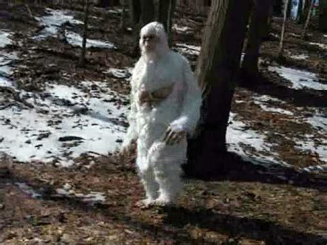 Abominable Snowman Yetti found in the Himalaya mountains